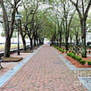 Charleston Waterfront Park Walkway Art Print
