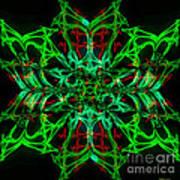 Charlotte's New Freakin' Awesome Neon Web Art Print