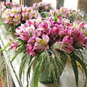 Chateau De Chenonceau Flowers On Mantle Art Print