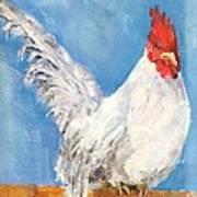 Cheeky Cock Art Print