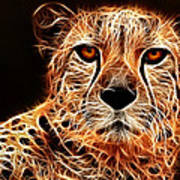 Cheetah Artwork Art Print