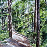 Cheraw Trail Art Print