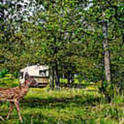 Cherokee Lake Thousand Trails Preserve Art Print