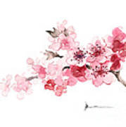 Cherry Blossom Branch Watercolor Art Print Painting Art Print