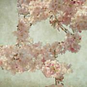 Cherry Blossom Bridal Bouquet Art Print