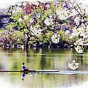 Cherry Blossom Rower Art Print