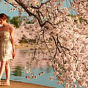 Cherry Blossoms 2013 - 079 Art Print