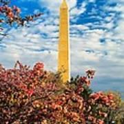 Cherry Blossoms In Washington Art Print