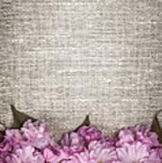 Cherry Blossoms On Linen  Art Print by Elena Elisseeva