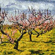 Cherry Trees 3.0 Art Print