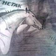 Chetak Art Print
