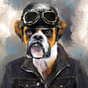 Chic Boxer Aviator Art Print by Jai Johnson