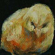 Chick 02 Art Print