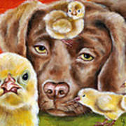 Chick Sitting Afternoon Art Print