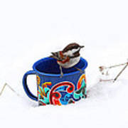Chickadee And Tin Cup In Snow Art Print