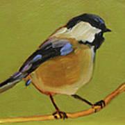 Chickadee IIi Art Print