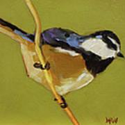 Chickadee V Art Print