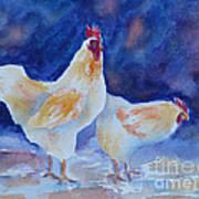 Chicken Duo Art Print