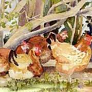 Chickens In The Hedge II Art Print