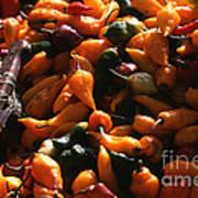 Chiclayo Peppers #2 Art Print