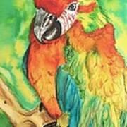 Chico Art Print