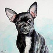 Chihuahua Black Art Print