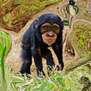 Chimpanzee Art Print by Daniele Smith