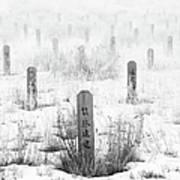 Chinese Grave Markers Art Print