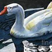 Chinese Waterfowl Art Print