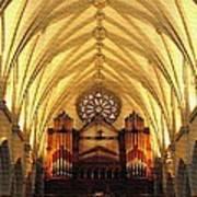 Choir Loft At Saint Josephs Cathedral Buffalo New York Art Print