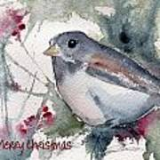 Christmas Birds 01 Art Print