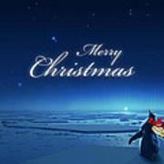 Christmas Card - Penguin Blue Art Print