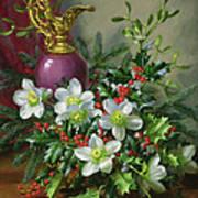 Christmas Roses Art Print by Albert Williams
