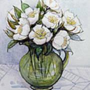 Christmas Roses Art Print