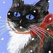 Christmas Siamese Art Print