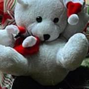 Christmas Teddy Bear Art Print