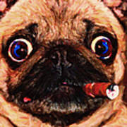 Cigar Puffing Pug - Painterly Art Print by Wingsdomain Art and Photography