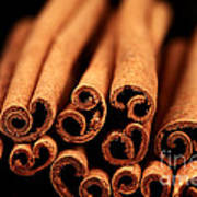 Cinnamon Sticks Art Print