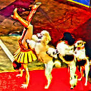 Circus Dog Act Art Print