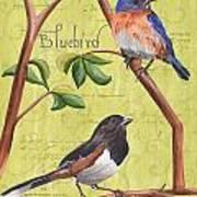 Citron Songbirds 1 Art Print by Debbie DeWitt