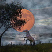 Claiming The Moon Art Print by Betsy Knapp