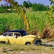 Classic Cuba Art Print