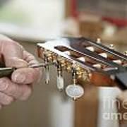 Classical Guitar Maker Art Print