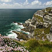 Cliffs Of Kerry Ireland Art Print by Dick Wood