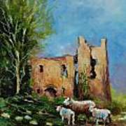 Clonmore Castle  Ireland Art Print