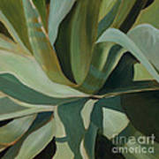 Close Cactus Art Print