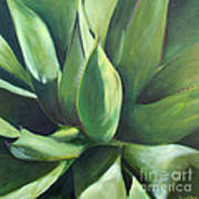 Close Cactus II - Agave Art Print