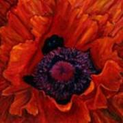 Close Up Poppy Print by Billie Colson