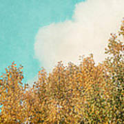 Cloud And Birches Art Print