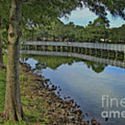 Cloud Reflection At The Pond Art Print